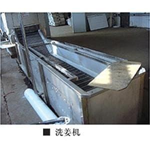 供應 洗姜機