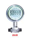 峰值数字压力表ACD-2F